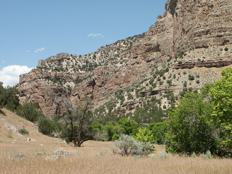 <b>Jones Hole canyon walls</b>   (Jun 28, 2003, 02:09pm)