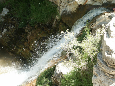 Waterfall from the top   (Jun 28, 2003, 03:02pm)