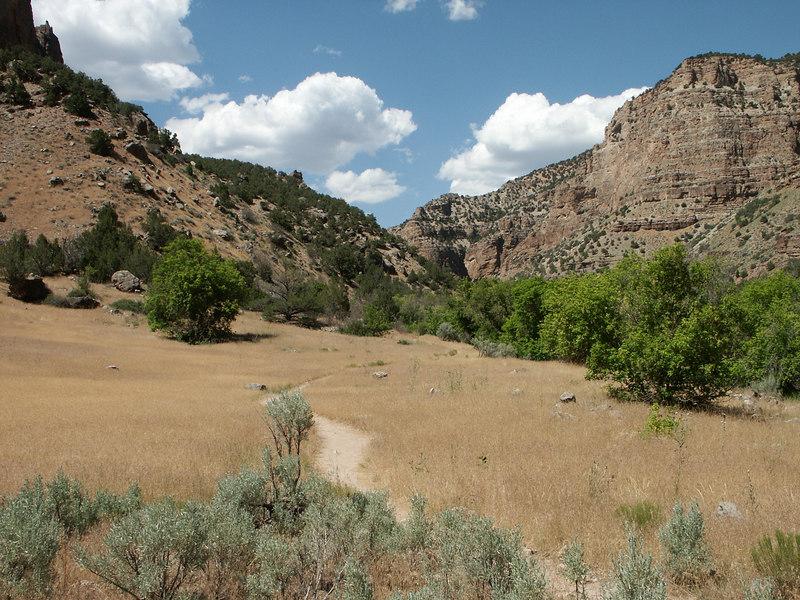<b>View towards river in Jones Hole canyon</b>   (Jun 28, 2003, 03:36pm)