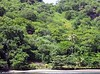 <b>Petit Byahaut suite 5 seen from the water</b>   (Jul 16, 2004, 01:55pm)  <p align=left>Can you see suite number 5 hidden in the trees?</p>