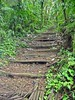 <b>Most of the trail was steeply up and up and up</b>   (Jul 17, 2004, 11:25am)