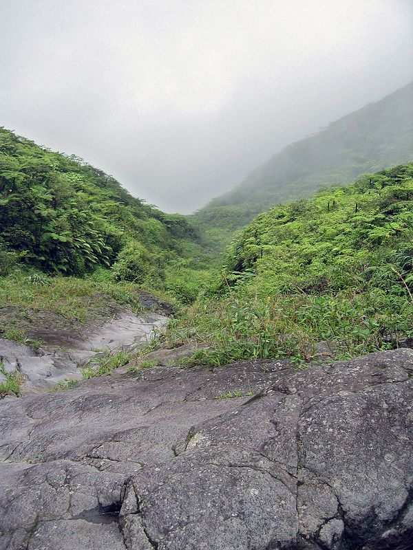 <b>The last third was above the rain forest</b>   (Jul 17, 2004, 11:56am)  <p align=left>The final third of the trip is above the tree line, out of the rain forest.  Here (and in the next picture) you can see the typical terrain, steep volcanic soil with scrub and grasses.</p>