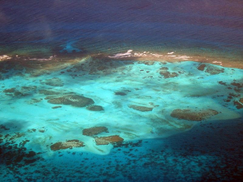 <b>Part of the reef at Tobago Cays, from the air</b>   (Jul 27, 2004, 11:04am)  <p align=left>The airplane from Union Island to Barbados flew over the Tobago Cays, and we took this picture of part of the Cays out of the airplane window.</p>  <p align=left></p>