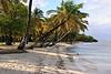 Beach at Britannia Bay (Dec 9, 2008, 08:25am)<br /> <br /> Mustique Island