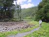 <b>Damon in Pololu Valley</b>   (Jul 15, 2001, 11:10am)