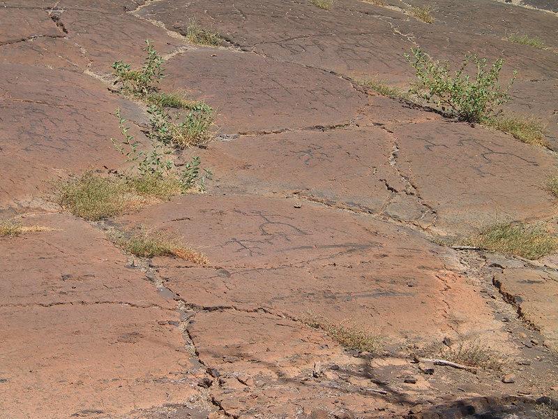 <b>Shots of the multiple petroglyphs at Malama</b>   (Jul 15, 2001, 02:22pm)