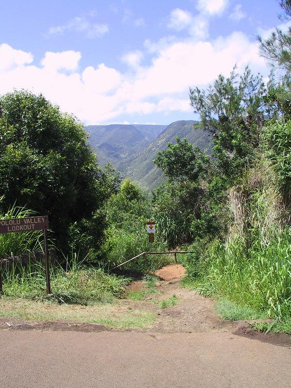 <b>Trail to Pololu Beach at end of Route 270</b>   (Jul 15, 2001, 10:48am)