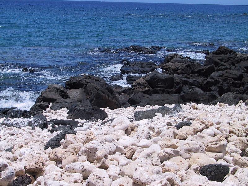 <b>Coral and lava contrast at Lapakahi waterfront</b>   (Jul 15, 2001, 12:50pm)
