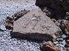 <b>Close up of petroglyph at Malama</b>   (Jul 15, 2001, 02:01pm)