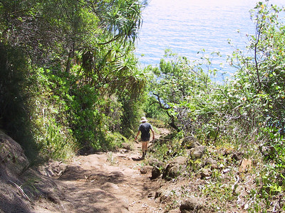 Judy on trail down to Pololu Beach   (Jul 15, 2001, 10:53am)
