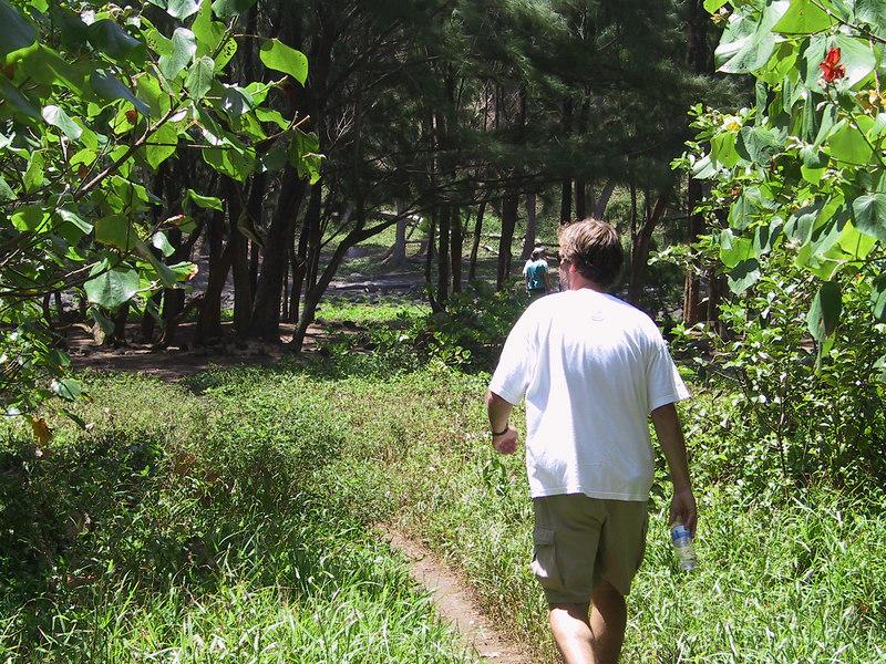 <b>Damon in Pololu Valley</b>   (Jul 15, 2001, 11:09am)