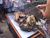 <b>Digging out the roasted pig 4</b>   (Jul 16, 2001, 06:07pm)