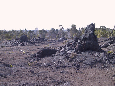 More views of 1969 lava flow   (Jul 17, 2001, 03:56pm)