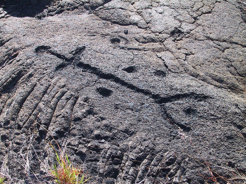 <b>Petroglyph at end of Puu Loa Petroglyph Trail</b>   (Jul 17, 2001, 04:58pm)
