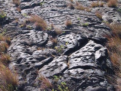 Petroglyphs at end of Puu Loa Petroglyph Trail   (Jul 17, 2001, 04:55pm)