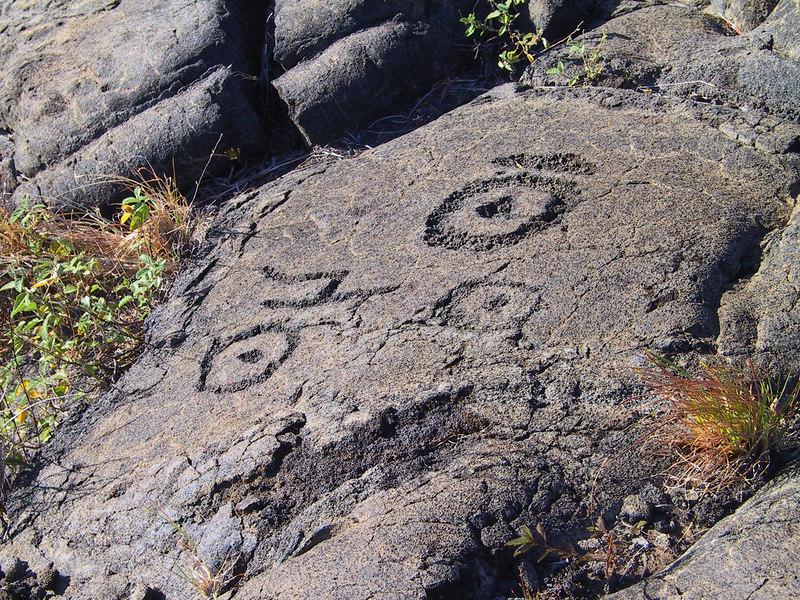 <b>More Puu Loa petroglyphs</b>   (Jul 17, 2001, 04:56pm)