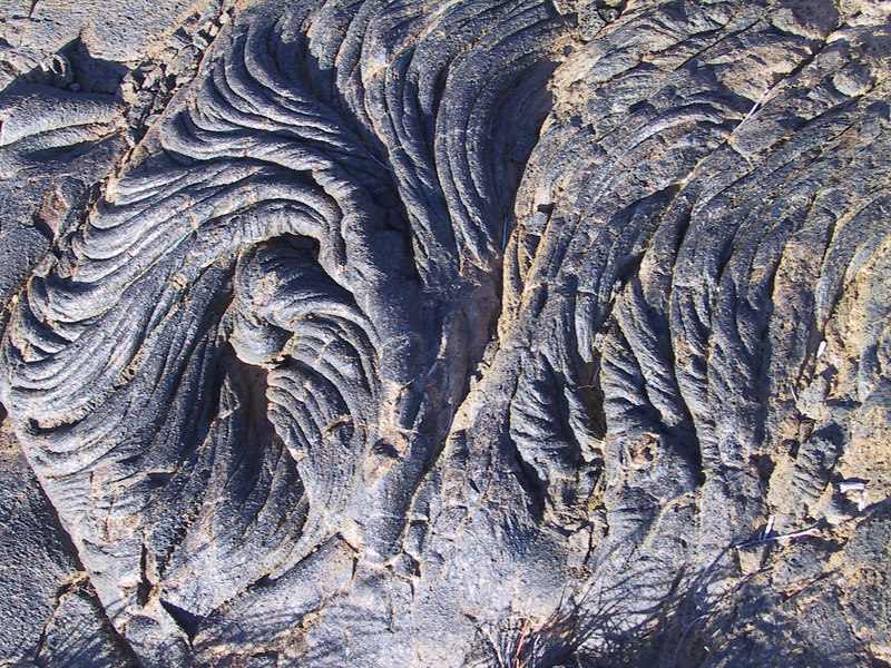 <b>Patterns of pahoehoe lava along Puu Loa Petroglyph Trail</b>   (Jul 17, 2001, 05:08pm)