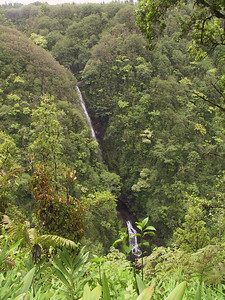 Another waterfall near Akaka Falls   (Jul 18, 2001, 02:02pm)