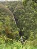<b>Another waterfall near Akaka Falls</b>   (Jul 18, 2001, 02:02pm)