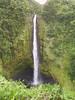 <b>Akaka Falls</b>   (Jul 18, 2001, 02:11pm)