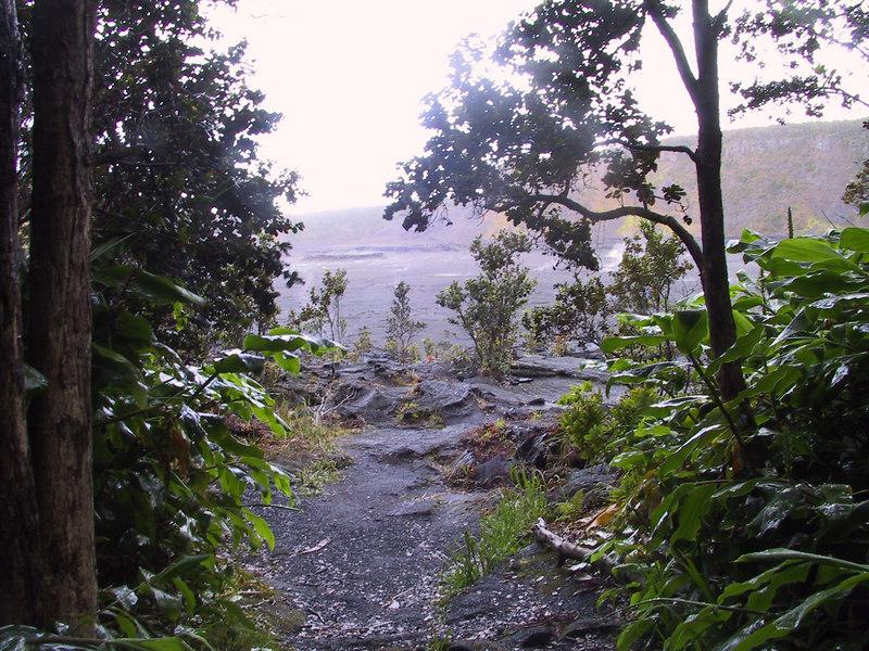 <b>Entering Kilauea Iki from rain forest</b>   (Jul 18, 2001, 06:39am)