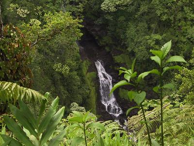 Close up of bottom of second falls near Akaka Falls   (Jul 18, 2001, 02:02pm)