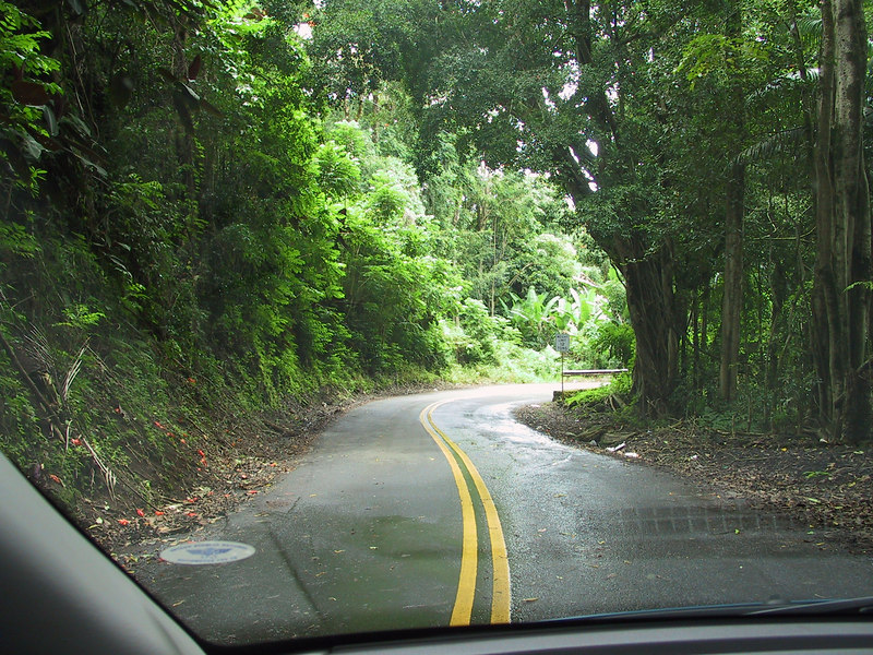 <b>Scenic Drive paralleling Route 19 north of Hilo</b>   (Jul 18, 2001, 12:48pm)