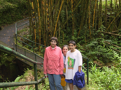 Beth Daphne and Ben on trail to Akaka Falls   (Jul 18, 2001, 01:59pm)