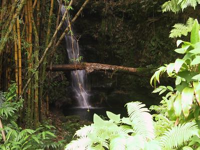 Hidden waterfall seen from path near Akaka Falls   (Jul 18, 2001, 02:21pm)