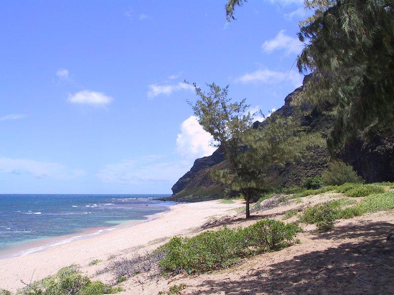 <b>Looking north up Milolii Beach</b>   (Jul 23, 2001, 12:38pm)