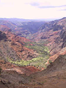 Wamea Canyon from Puu HinaHina Lookout   (Jul 22, 2001, 11:27am)