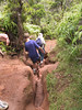 <b>Back through the narrows of the Pihea Trail</b>   (Jul 22, 2001, 02:19pm)