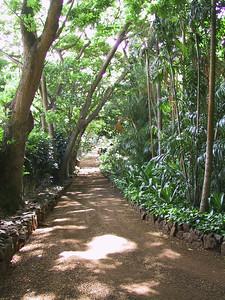 A walkway through Allerton Garden   (Jul 24, 2001, 09:34am)