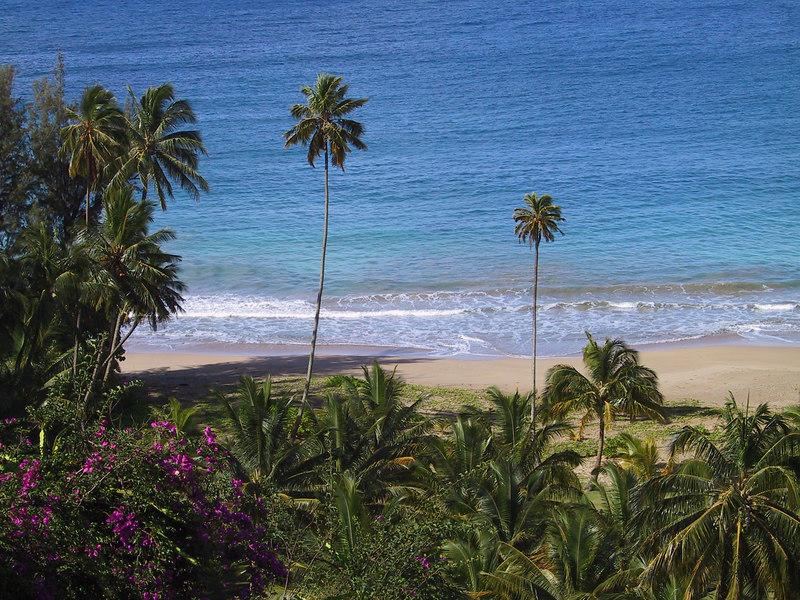<b>Beach at Lawai Bay</b>   (Jul 24, 2001, 09:15am)