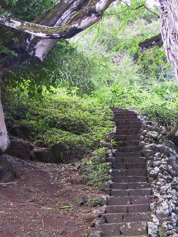 <b>Stairs near Lawai Beach at end of Allerton Garden tour</b>   (Jul 24, 2001, 10:47am)