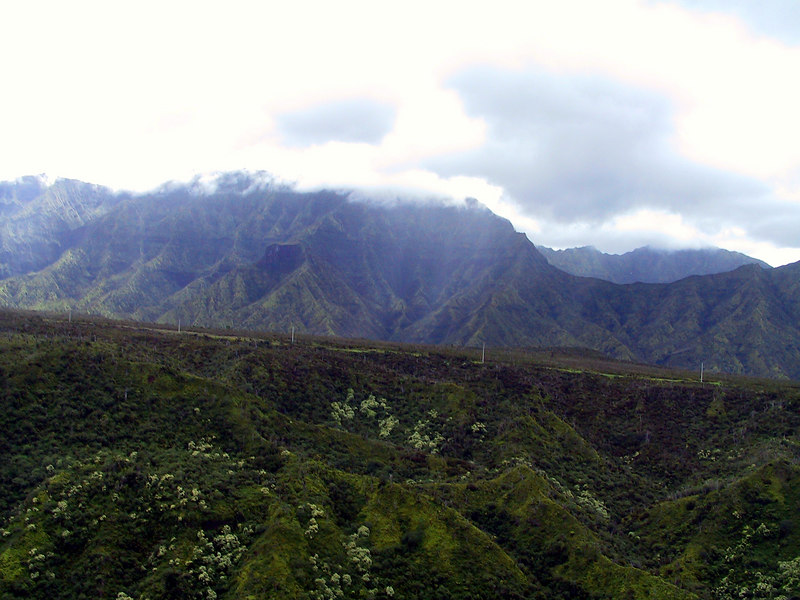 <b>Approaching Mt Waialeale</b>   (Jul 26, 2001, 02:31pm)