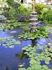 <b>Japanese garden at Pono Kai condos</b>   (Jul 26, 2001, 05:08pm)