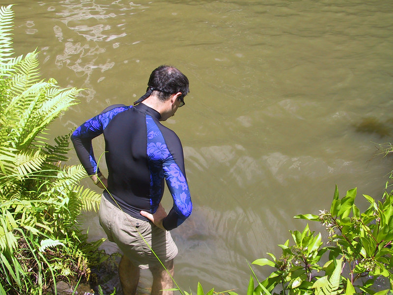 <b>This swimming hole was supposed to be clear water</b>   (Jul 26, 2001, 01:46pm)