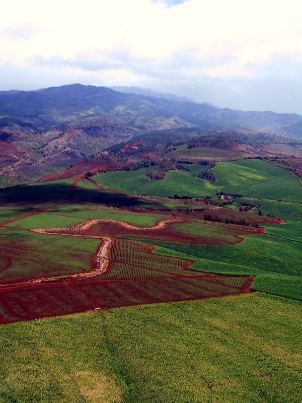 <b>Helicopter view of Menehune Ditch</b>   (Jul 26, 2001, 12:47pm)