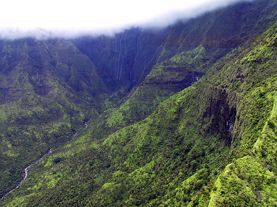 Helicopter view of Mt Waialeale crater in the distance   (Jul 26, 2001, 02:35pm)