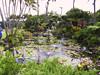 <b>Japanese garden at Pono Kai condos</b>   (Jul 26, 2001, 10:37am)