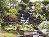 <b>Japanese garden at Pono Kai condos</b>   (Jul 26, 2001, 10:38am)