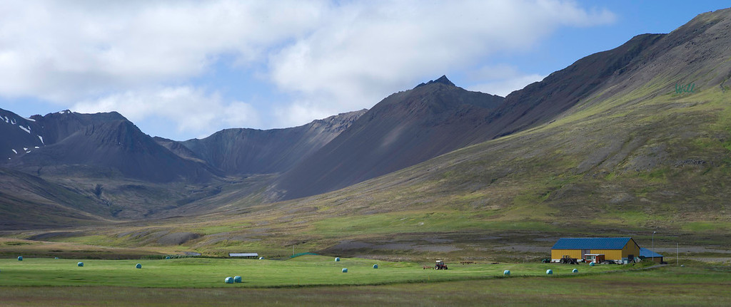 © Robert Will 2013<br /> <br /> North Iceland offers some of the country's best grazing land for horses and sheep.