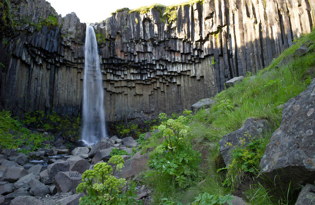© Robert Will 2013<br /> <br /> The basalt stone wall surrounding Svartifoss in Skatafell Park is its most recognizable feature.