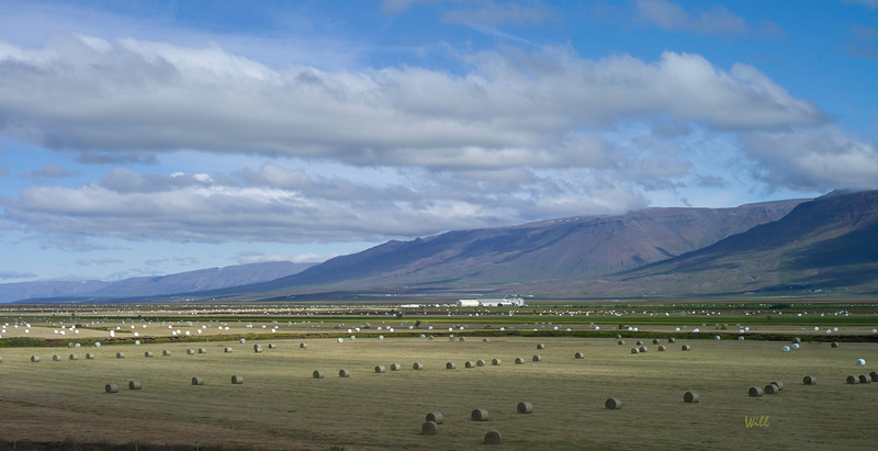 Hay Bales - Northern Iceland