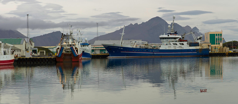 Ships in port at Höfn in the Eastern Fjords.