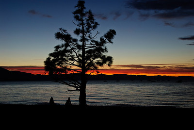 Sunset over Lake Tahoe, with a tree in the foreground.