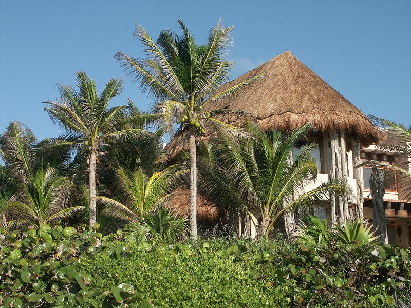 <b>Ocean front home is a natrual setting</b>   (Dec 31, 2002, 08:36am)