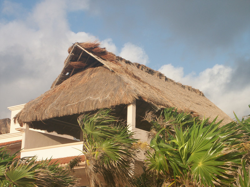 <b>Roof of the house next to the villa</b>   (Dec 31, 2002, 07:15am)