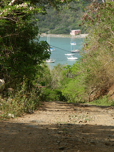 Down the Johnny Horn Trail into Coral Bay   (Jul 01, 2002, 09:18am)